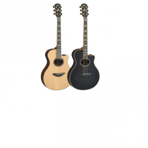Acoustic & Electro Acoustic Guitars